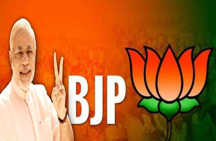 लोकसभा चुनाव से पहले यहां भाजपा ने दिखाया दम, दर्ज की जोरदार जीत, समाजवादी पार्टी की निकली हवा