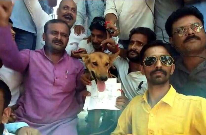 एक्ट्रोसिटी एक्ट का मध्यप्रदेश में जबरदस्त विरोध, कुत्ते को ज्ञापन देकर सुनाई खरी-खोटी