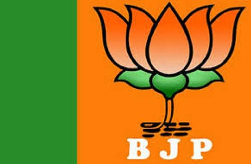 लोकसभा चुनाव से पहले  भाजपा ने दिया महागठबंधन को करारा झटका, रिकॉर्ड वोटों से जीती ये सीट