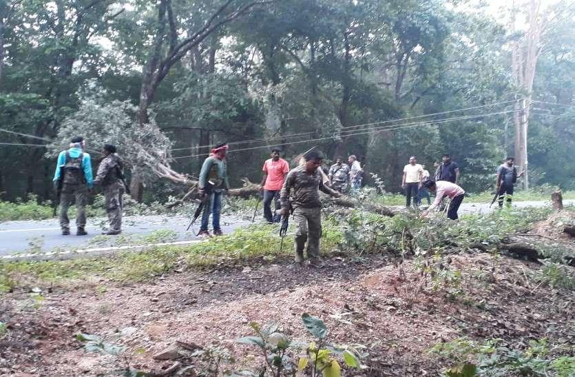 मुठभेड़ में कमांडर के मारे जाने के बाद दहशत फैलाने माओवादियों पेड़ काटकर किया रास्ता बंद, जवानों ने किया हाईअलर्ट