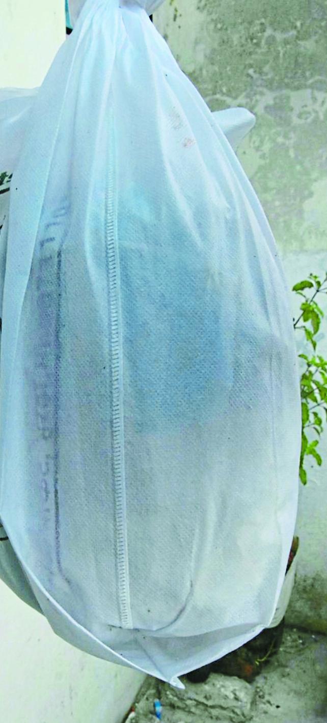 सफेद कपड़े के कैरीबैग के नाम पर रोजाना खप रहा 2 टन प्लास्टिक