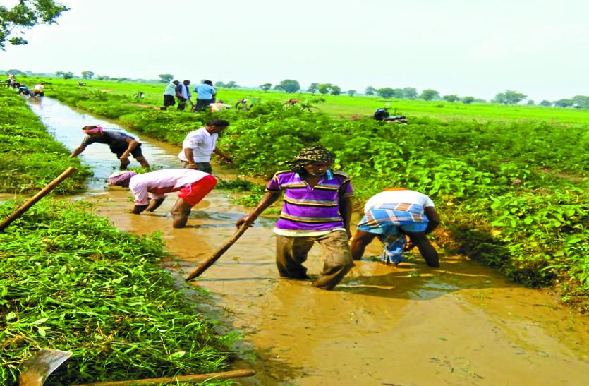 अवैध कुलापों की वजह से इस गांव के किसानों को नहीं मिल रहा पानी