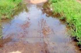 स्वच्छता अभियानों को मुंह चिढ़ा रही गंदगी, कचरे के ढेर, सड़क पर बह रहा गंदा पानी