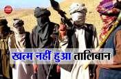 अफगानिस्तान: अब भी मजबूत है तालिबान, अमरीका पर दुनिया को गुमराह करने के आरोप