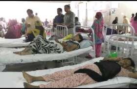 बरेली में  मलेरिया के बाद अब मिले डेंगू के मरीज