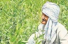 किसानों के लिये खुशखबरी, सरकार की इस सुविधा से आय होगी दुगुनी