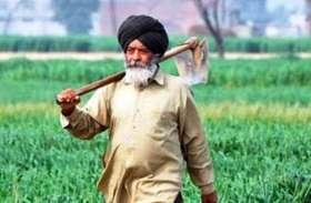 पंजाब की किसान यूनियन ने की नई कृृषि नीति तैयार करने की मांग