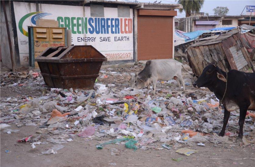 स्वच्छता पखवाड़े के तहत चल रहा सफाई अभियान, नजर नहीं आ रही सफाई