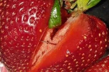 ऑस्ट्रेलिया: स्ट्रॉबेरी समेत कई फलों में मिलीं सुईयां, कई इलाकों में बिक्री रूकी