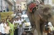 पीएम नरेन्द्र मोदी के संसदीय क्षेत्र में हाथी से खींची गयी कार