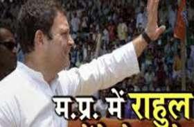 mp election 2018 -  इन सीटों पर जीत की जिम्मेदारी सीधे राहुल की, बनाया जबर्दस्त प्लान