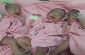 अस्पताल में प्रसूता ने तीन बेटियों को जन्म दिया, जच्चा बच्चा पूरी तरह से स्वस्थ