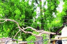 मलारना डूंगर में 11 घंटे बिजली गुल
