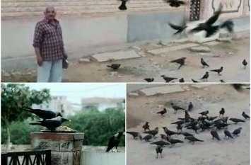 ये हैं जोधपुर के Crow Man, इनकी एक आवाज पर अपनेआप भोजन करने आते हैं 300 कौवे