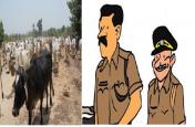 सीएम योगी राज में भी पुलिस करा रही पशु तस्करी, ऑडियो वायरल होने से मचा हड़कंप