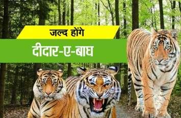 खुशखबरी: अब आप भी कर पाएंगे 'बाघ दर्शन'...पढिय़े पूरी खबर