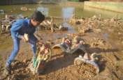 लीकेज में बहा कुंड का पानी तो पांच दिन बाद भी नहीं गलीं प्रतिमाएं