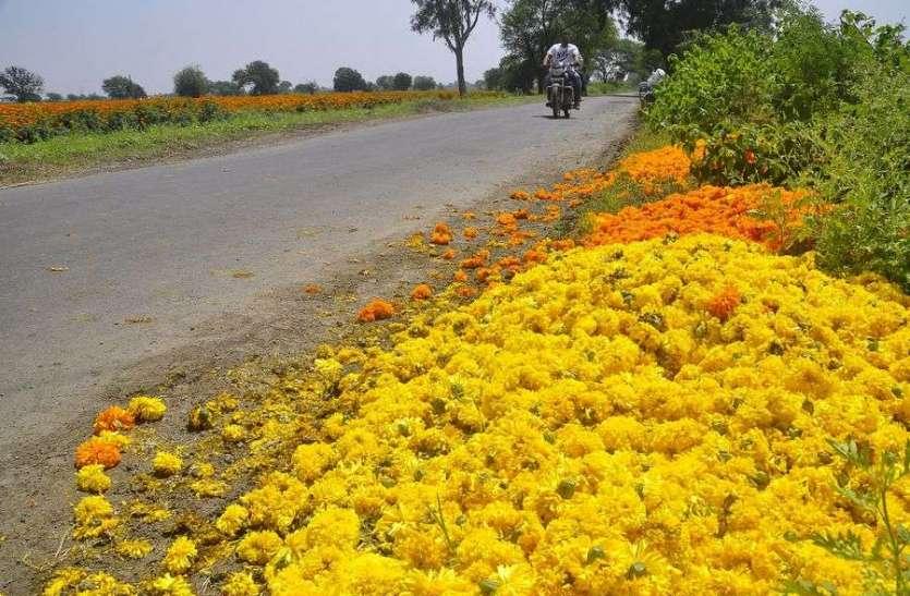 किसानों ने फूल फेके