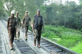 सरकारी नाैकरी - सहायक वन संरक्षक बनने का सुनहरा माैका, जल्द करें आवेदन