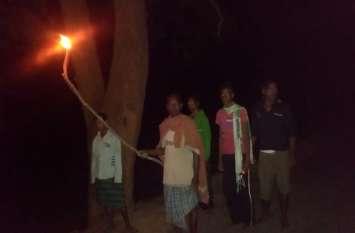 शाम ढलते ही गांव की ओर आते हैं ये विशाल जानवर, इसलिए मशाल जलाकर पूरी रात करते है परिवार की सुरक्षा