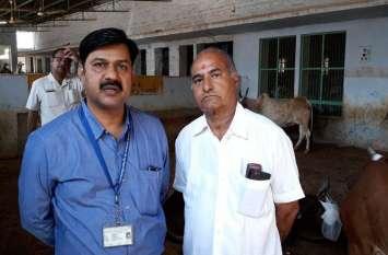 प्रदेश में पहली बार गायों के मोतियाबिंद का ऑपरेशन