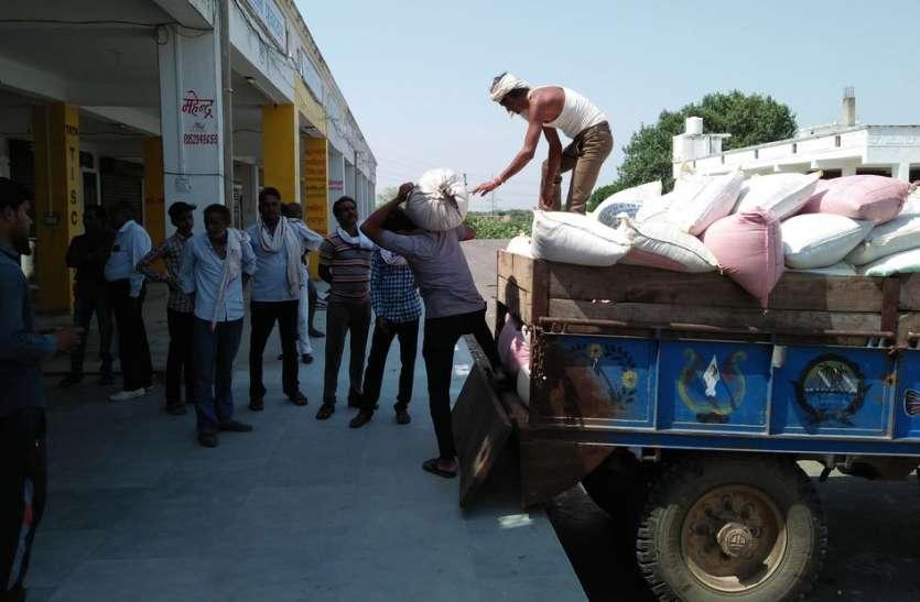 राजस्थान के करौली की कृषि मण्डी के एक वर्ष में प्रगति पथ पर बढ़े कदम