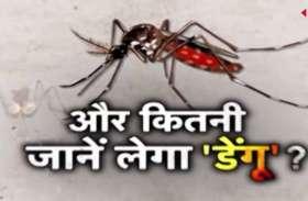 Big Breaking: भिलाई में डेंगू ने ली फिर एक मासूम की जान अब तक डेंगू से 45 लोगों की हो चुकी है मौत