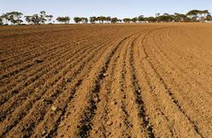 मिट्टी की सेहत सुधारेगी सूक्ष्म पोषक तत्व किट, प्रदेश में किट के लिए लक्ष्य आवंटित