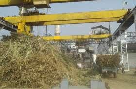 570 करोड़ का गन्ना बेचने वाले नरसिंहपुर में अभी तक नहीं हो सका गन्ना परिषद का गठन