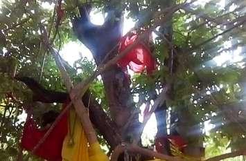मोक्ष प्राप्ति को इस वृक्ष के दर्शन करने आते हैं लोग, पूरे भारत में सिर्फ चार स्थानों पर है विराजमान