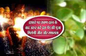 दशहरे पर रावण दहन के बाद जरुर करें इस पेड़ की पूजा, हर क्षेत्र में सालभर मिलेगी जीत और सफलता