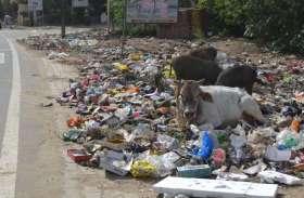 स्वच्छता में अलवर शहर ही नहीं, गांव भी है फिसड्डी, जानिए अलवर को कौनसी रैंक मिली है