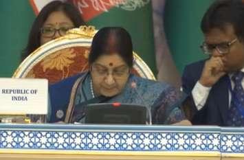 Video: विदेश मंत्री सुषमा स्वराज का दावा, 2020 तक भारत बंद कर देगा प्लास्टिक का इस्तेमाल
