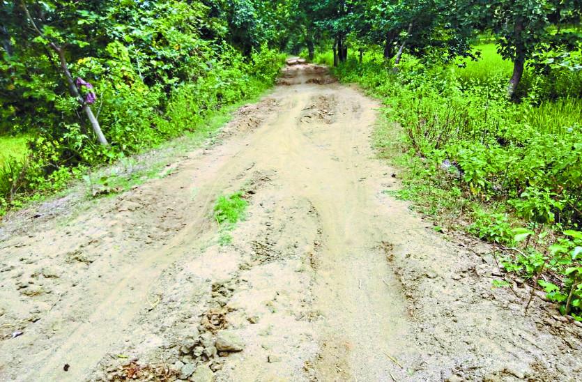 15 सालों में नहीं बन पाई इस गांव की सड़क, न मिली जरूरी सुविधाएं, ग्रामीणों ने किया चुनाव बहिष्कार ऐलान