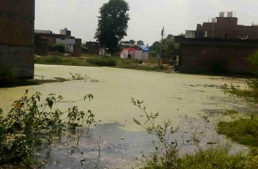 ये तालाब नहीं खाली प्लॉट  है, जानिए क्या है इसके पीछे का राज