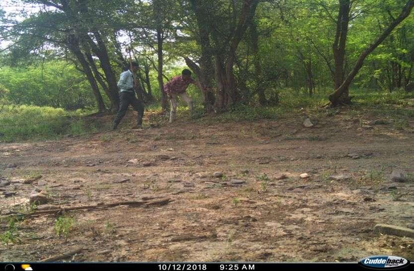 कैमरे चुराते चोर खुद हुए कैमरे में कैद
