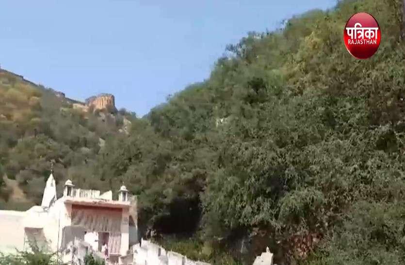 मनसा माता मंदिर का इतिहास