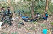 सिहावा के जंगल से ग्राउंड रिपोर्ट: पलाश के जंगलों में बारूद की गंध