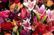 लो अब दुकानदार नहीं, फूलों के गुलदस्ते स्वागत को तैयार...!