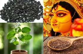 इन नौ औषधियों में बसते हैं मां दुर्गा के नौ स्वरूप, सेवन करने से पास भी नहीं भटक सकती कोई बीमारी