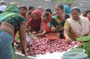 प्याज के बढ़ते दाम से केंद्र सरकार हुर्इ सतर्क, दिल्ली में कीमतें कम करनेे के आदेश
