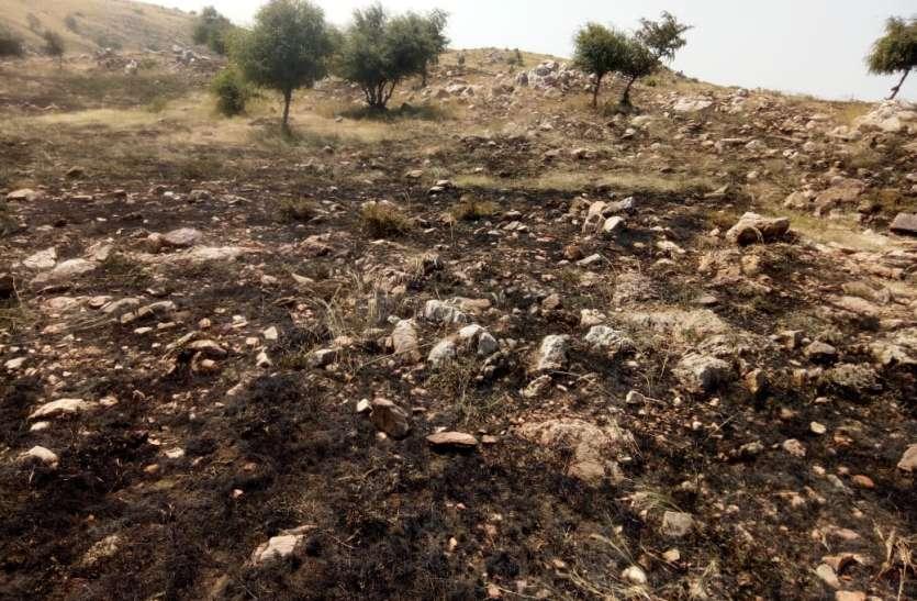 सामोद की मालेश्वर पहाड़ी पर तीन हैक्टेयर में लगी आग