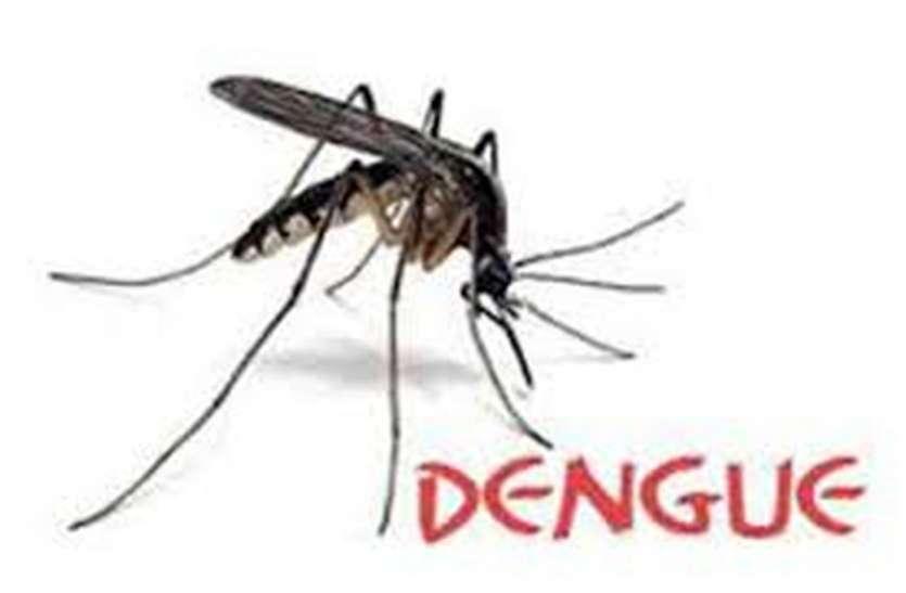 राजधानी जयपुर में द्रव्यवती नदी  दे रही है डेंगू का डंक—अब तक सामने आए 50 से ज्यादा मरीज