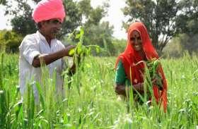 राजस्थान के किसानों के लिए खुशखबर! दस जिलों के किसानों को नवम्बर में मिलेगी ये बड़ी राहत
