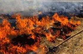 पराली न जलाने वाले किसानों को करवाया जाएगा हवाई सफर