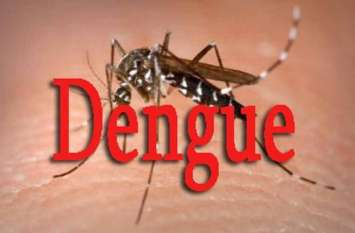 डेंगू की लड़ार्इ अब इस आधुनिक हथियार से, आशाएं संभालेंगी मोर्चा