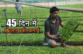 इस किसान ने दिल की सुनकर दिमाग लगाया और 45 दिन में यूं कमाने लगा 15 लाख रुपए