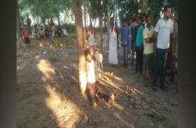 आस्ट्रेलियाई नागरिक का शव बोधगया में पेड़ से लटका मिला,हत्या या आत्महत्या?...पुलिस कर रही जांच