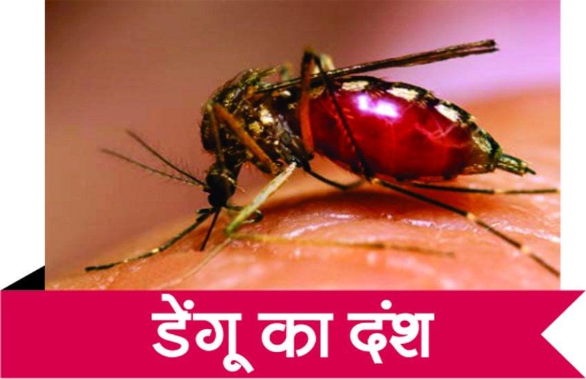 शहर में बढ़ रहा डेंगू का आंकड़ा, जांच के लिए कार्ड खत्म लोग हो रहे परेशान