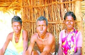 ये परिवार आज भी जी रहे खानाबदोश की जिंदगी, जंगल ही है इनका सब कुछ